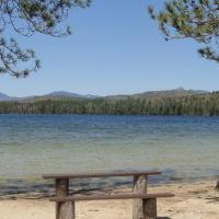 07-Beaches and Pitch Pine - White Lake SP