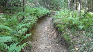 A well-loved bike trail.