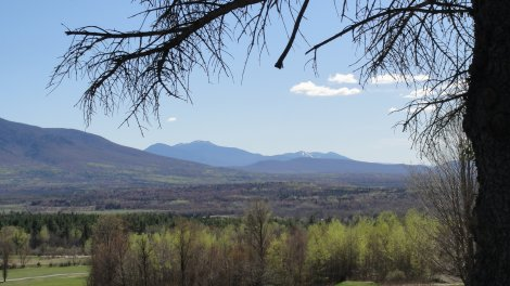 View from Jefferson NH