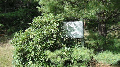 The sign for the Hoyt Sanctuary is mostly hidden.