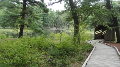 The Peverly Pond Trail leads to a bird-watching shelter