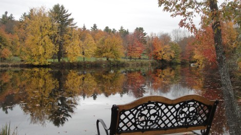 Mill Pond, East Washington NH