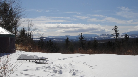 Looking south towards Mt. Washington from one of the campsites.