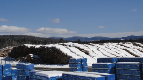 Always impressive - the nearby Milan Lumber Company's woodpiles are dwarfed by the rugged Mahoosuc Range to the east.