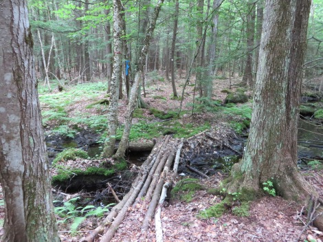 The half mile trail to the sanctuary is well-marked but rustic.
