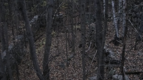 Although nearly dark, you can still make out some of the walls of this large stone structure near the end of Podunk Road just before it leaves the park