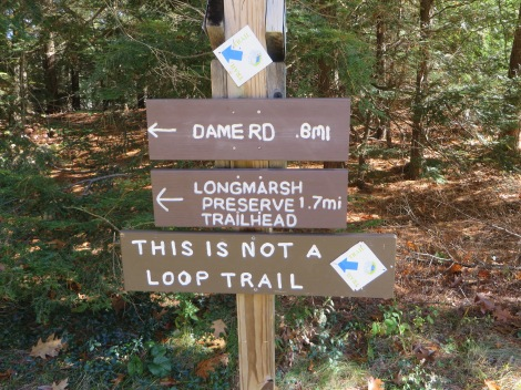 Many people seem to think this is a loop trail...