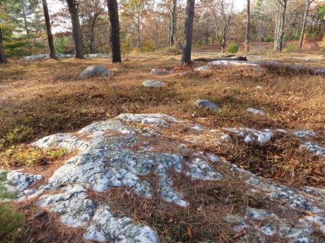 The top of Hall Mountain is almost entirely of milky quartz outcropping