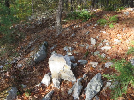 This might be all that's left of the cairn shown in the CCC photo from the 1930's