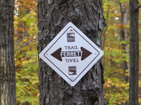 New trail signs are starting to appear