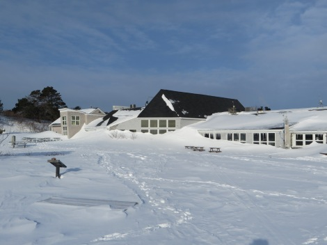 Snowdrifts to the roof of the Seacoast Science Center