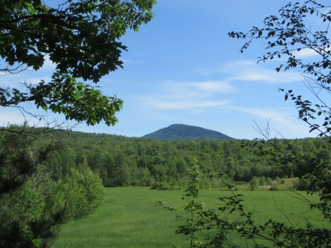 Mt. Kearsarge towers over part of the trail