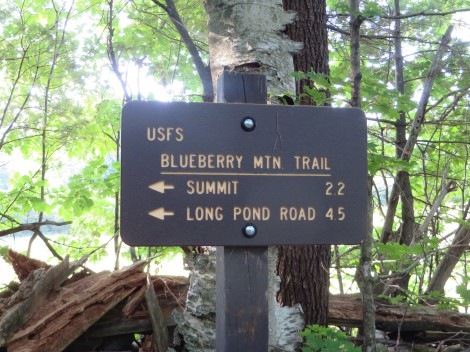 The westernmost USFS trail in the Whites
