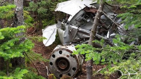Mt Success plane crash wreckage